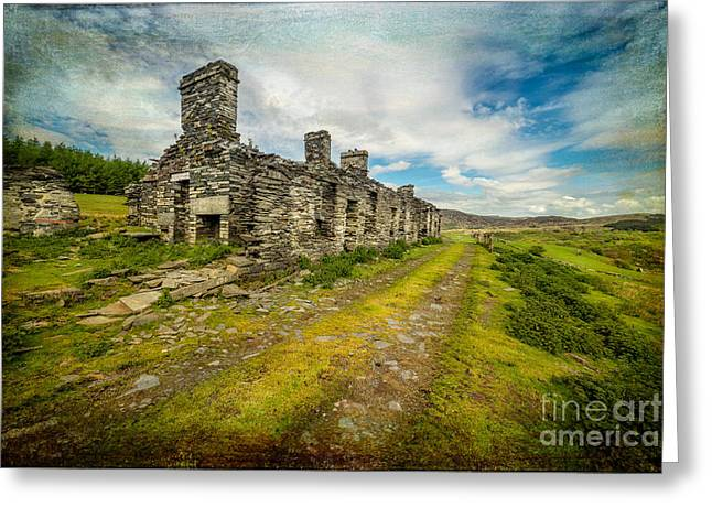 Cottage Ruins Greeting Card by Adrian Evans