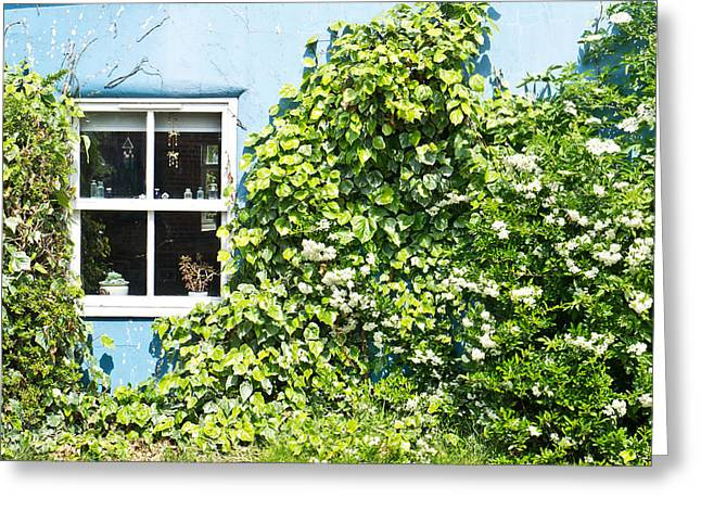 Cottage Wall Greeting Card by Tom Gowanlock