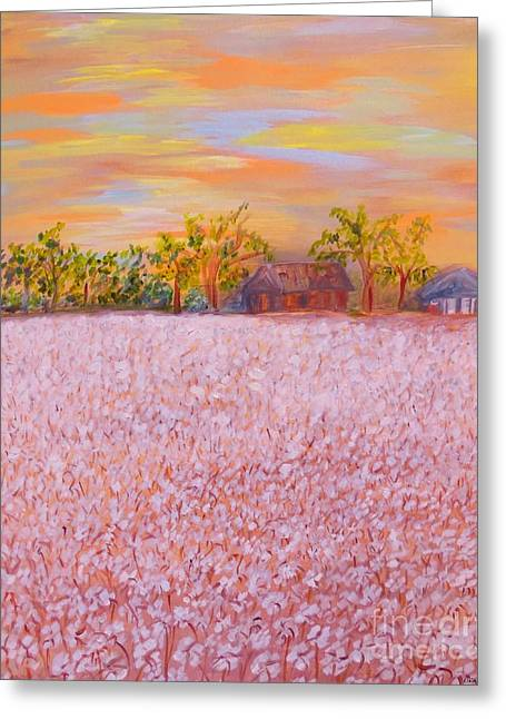 Harvest Time Greeting Cards - Cotton at Sunset Greeting Card by Eloise Schneider
