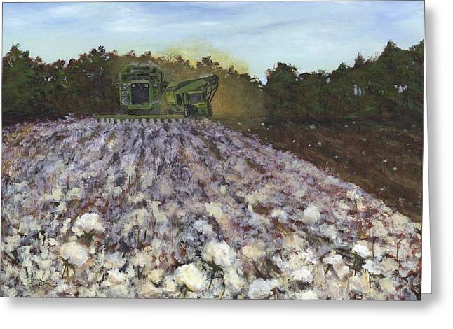 Recently Sold -  - Farmers Field Greeting Cards - Cotton Field Greeting Card by Donna Tucker