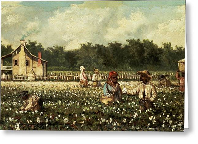 African-americans Greeting Cards - Cotton Field, Mississippi Oil On Panel Greeting Card by William Aiken Walker