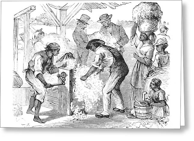 People Greeting Cards - Cotton Gin, 19th Century Greeting Card by British Library