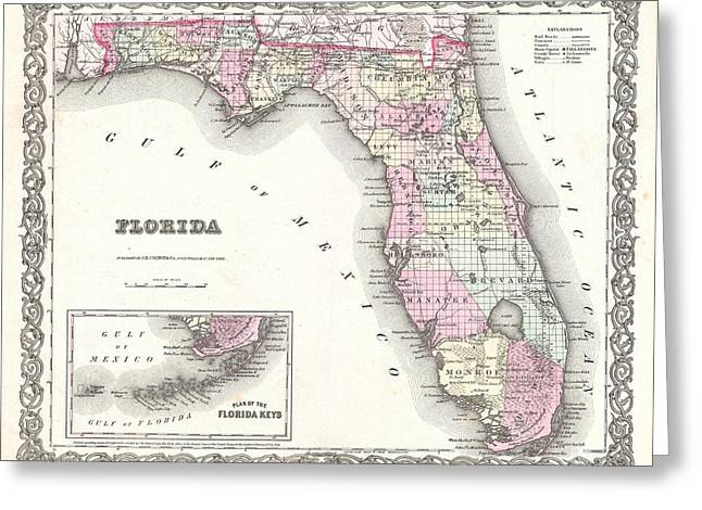Cotton Map Of Florida 1855 Greeting Card by Suzanne Powers