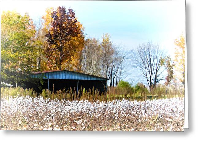 Sheds Greeting Cards - Cotton Pickin Time Greeting Card by Bonnie Willis