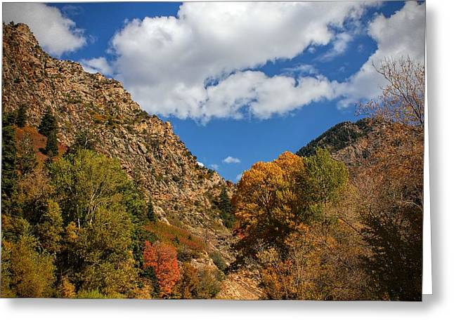 Little Cottonwood Canyon Greeting Cards - Cottonwood Canyon Autumn in Utah Greeting Card by Tracie Kaska