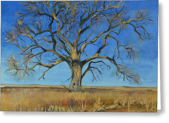 Tree Huggers Greeting Cards - Cottonwood on the North 40 Greeting Card by Pattie Wall