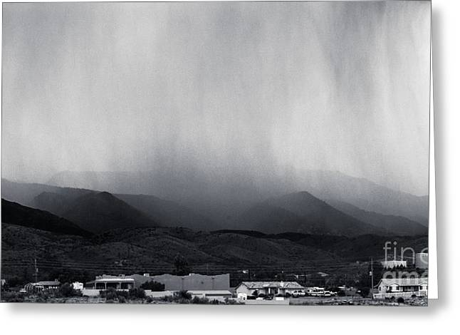 Cottonwood Rain Greeting Card by Arne Hansen