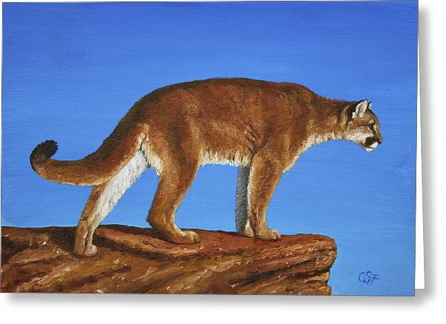 Wild Cats Paintings Greeting Cards - Cougar Cliff Greeting Card by Crista Forest