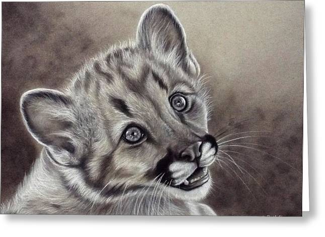 Photorealism Greeting Cards - Cougar Cub  Greeting Card by Ruth Hopper