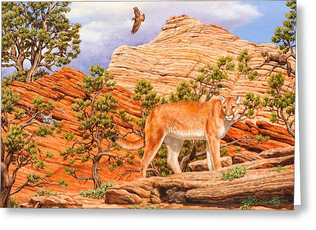 Red-tailed Hawk Greeting Cards - Cougar - Dont Move Greeting Card by Crista Forest