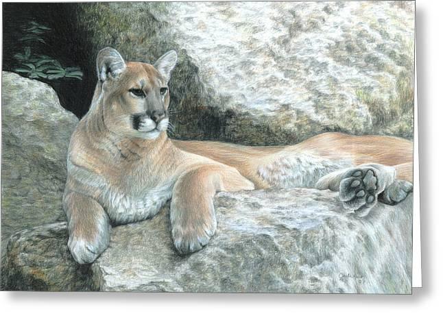 Cougar Haven Greeting Card by Carla Kurt
