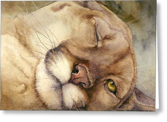 Cougar Greeting Cards - Cougar    I See You     Greeting Card by Bonnie Rinier