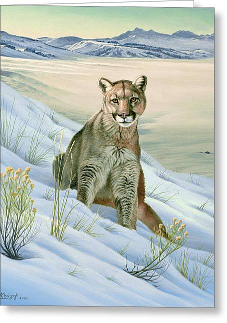 Yellowstone Greeting Cards - Cougar in Snow Greeting Card by Paul Krapf
