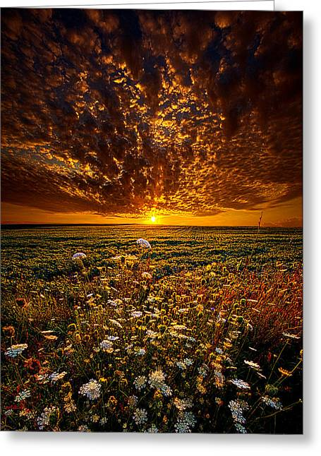 Shadows Greeting Cards - Couldnt Find The Words To Say Greeting Card by Phil Koch