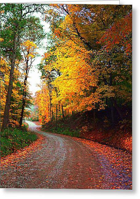 Autumn Scenes Greeting Cards - Country Autumn Gravel Road Greeting Card by Julie Dant