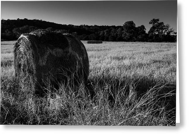 Hay Bales Greeting Cards - Country Bale Greeting Card by William Huchton