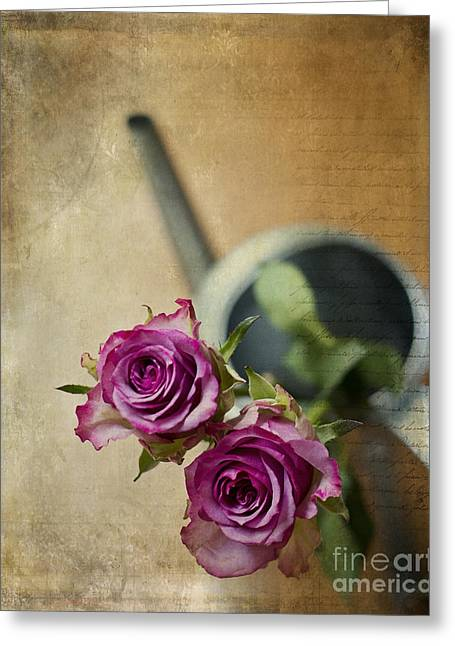 Book Cover Art Greeting Cards - Country chic Roses Greeting Card by Ivy Ho