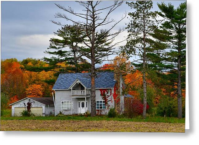 Country Cottage in Autumn Greeting Card by Julie Dant