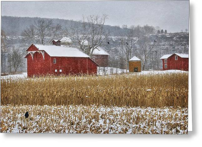Barn Digital Greeting Cards - Country Crows Greeting Card by Lori Deiter