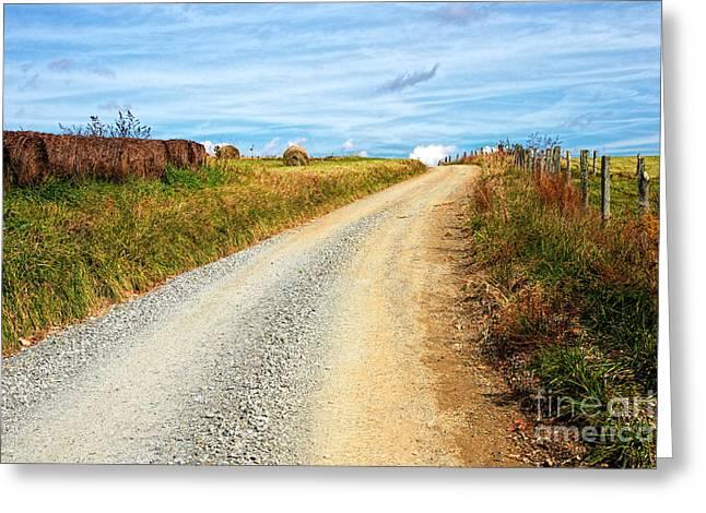 Sparta Greeting Cards - Country Farm Road Greeting Card by Dan Carmichael