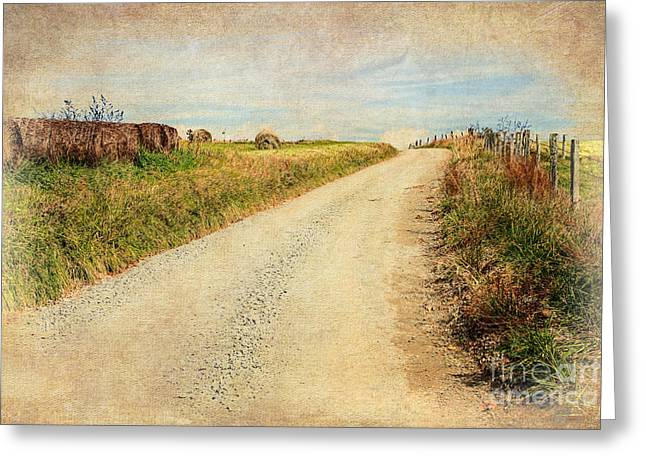 Sparta Greeting Cards - Country Farm Road LD Greeting Card by Dan Carmichael