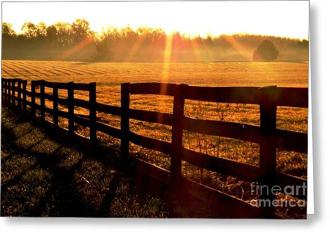 Wellspring Greeting Cards - Country Fence Greeting Card by Carlee Ojeda