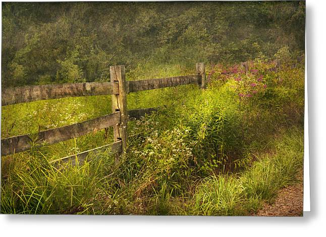 Country Landscapes Greeting Cards - Country - Fence - County border  Greeting Card by Mike Savad