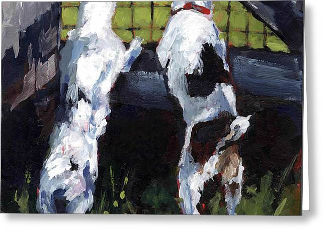Jack Russell Terrier Greeting Cards - Country Gate Greeting Card by Molly Poole
