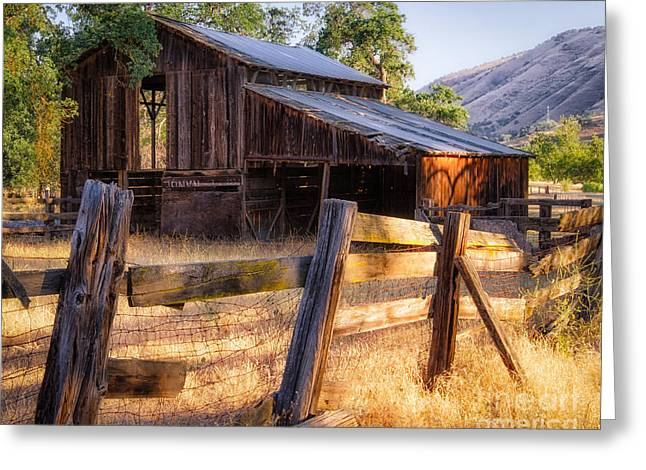 Americano Greeting Cards - Country in the Foothills Greeting Card by Anthony Bonafede