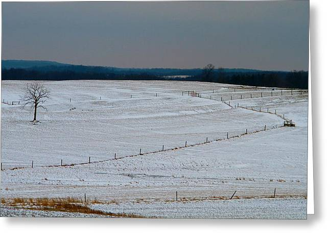 The Cornfield Greeting Cards - Country Landscape In Winter Greeting Card by Dan Sproul