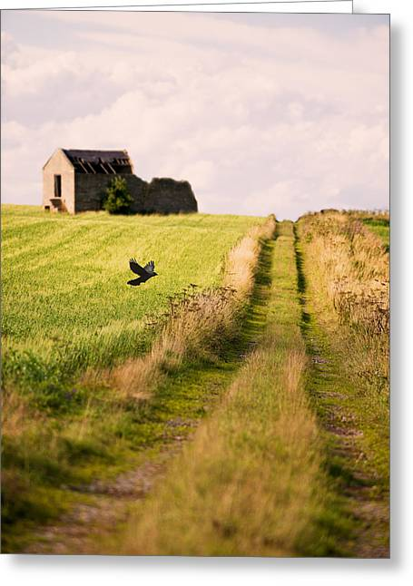 Country Greeting Cards - Country Lane Greeting Card by Amanda And Christopher Elwell