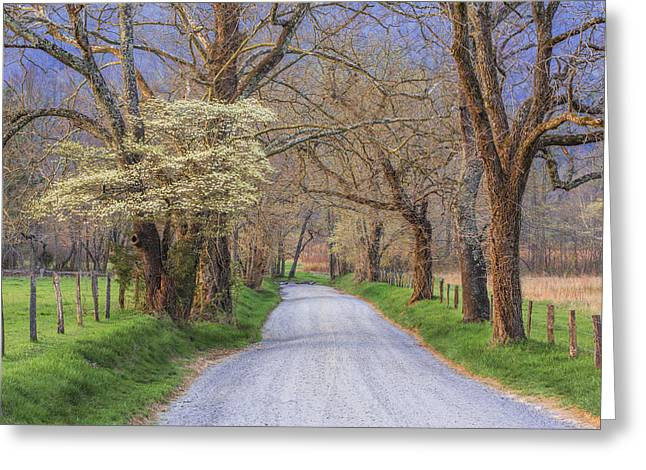 Smoky Greeting Cards - Country Lane Greeting Card by Mike Lang