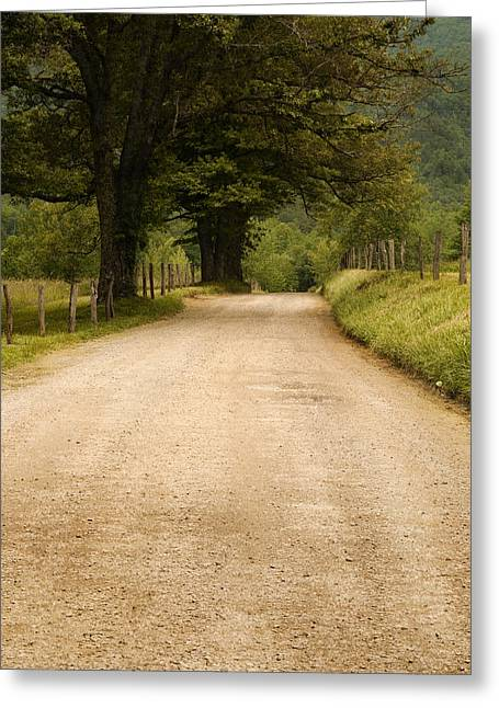Country Lane - Smoky Mountains Greeting Card by Andrew Soundarajan