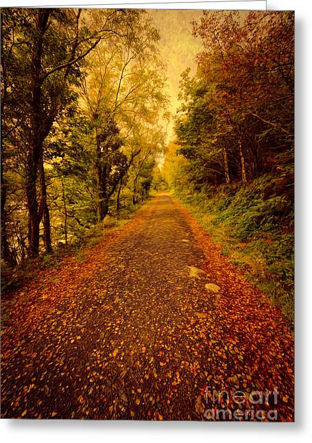 North Wales Greeting Cards - Country Lane v2 Greeting Card by Adrian Evans