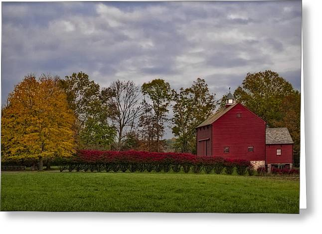 Barn Yard Greeting Cards - Country Life Greeting Card by Susan Candelario