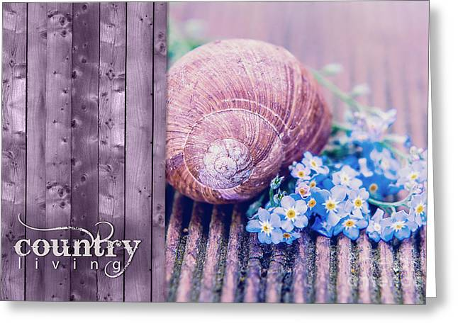 """forget Me Not Flowers"" Greeting Cards - Country Life Greeting Card by Viaina"