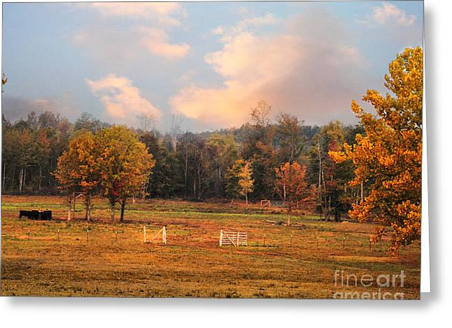 Autumn Scenes Greeting Cards - Country Morning Greeting Card by Jai Johnson