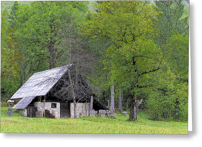 Cabin Wall Greeting Cards - Country Retreat Greeting Card by Douglas J Fisher