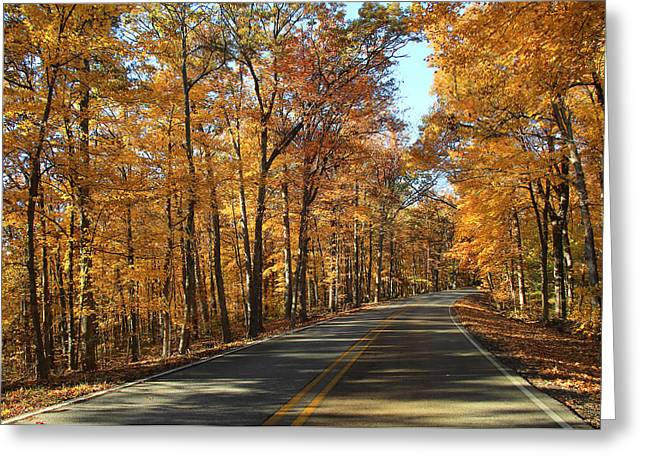 Southern Indiana Autumn Photographs Greeting Cards - Country Road 2 Greeting Card by Andrea Kappler