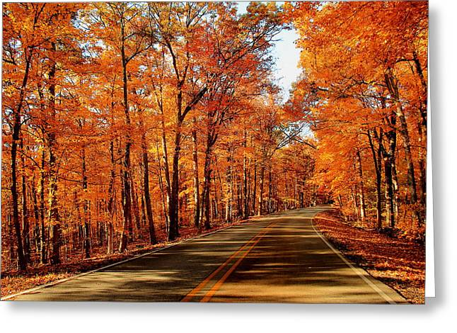 Southern Indiana Autumn Photographs Greeting Cards - Country Road Greeting Card by Andrea Kappler