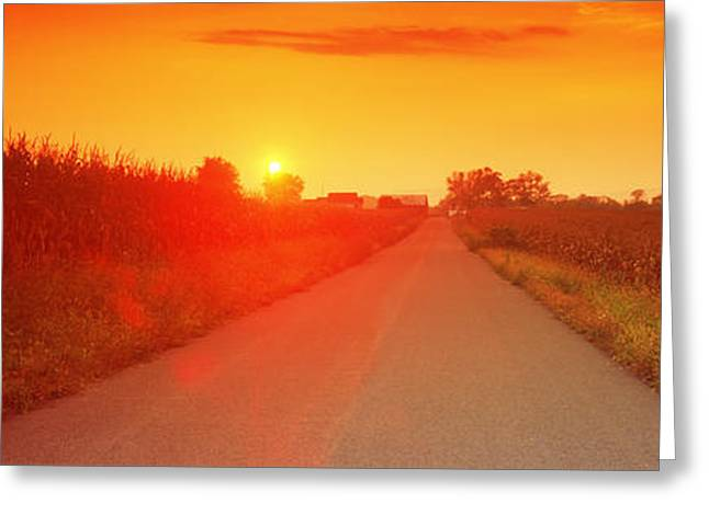 Northumberland Greeting Cards - Country Road At Sunset, Milton Greeting Card by Panoramic Images