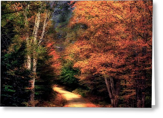 Country Road Greeting Card by Brenda Giasson