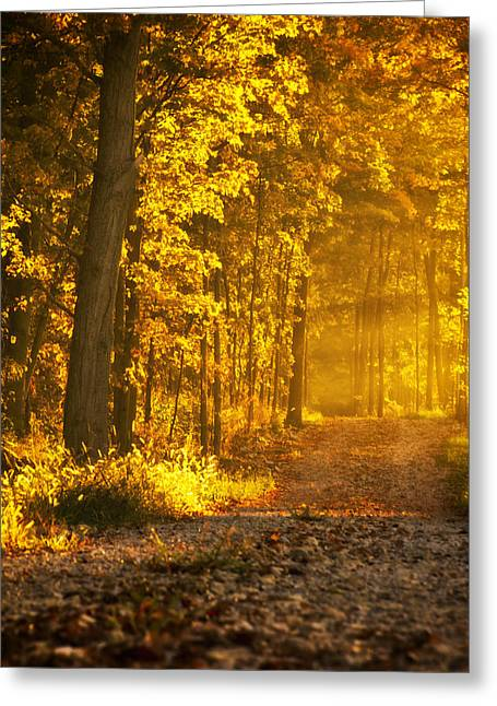 Indiana Autumn Greeting Cards - Country Road Central Indiana Greeting Card by Michael Huddleston