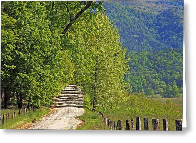 Geraldine Deboer Greeting Cards - Country Road Greeting Card by Geraldine DeBoer