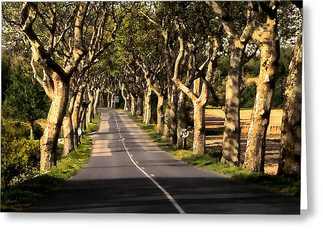 Dappled Light Greeting Cards - Country Road in Southern France - Bram D4 Greeting Card by Menega Sabidussi