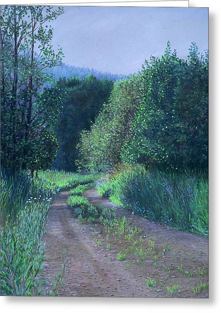 Birdseye Art Studio Greeting Cards - Country Road Greeting Card by Nick Payne