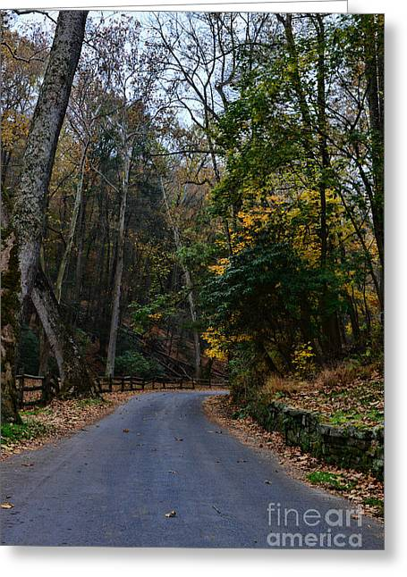 Backwoods Greeting Cards - Country Road Greeting Card by Paul Ward