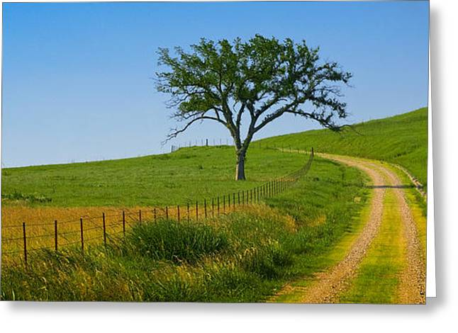 Bule Greeting Cards - Country Road Greeting Card by Ryan Heffron