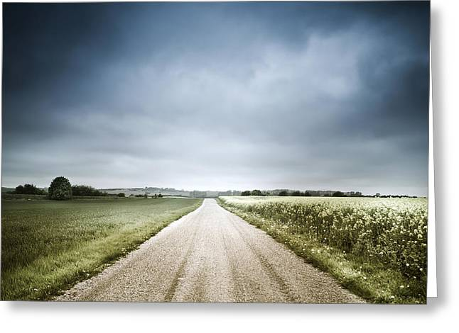 Country Road Through Fields, Denmark Greeting Card by Evgeny Kuklev