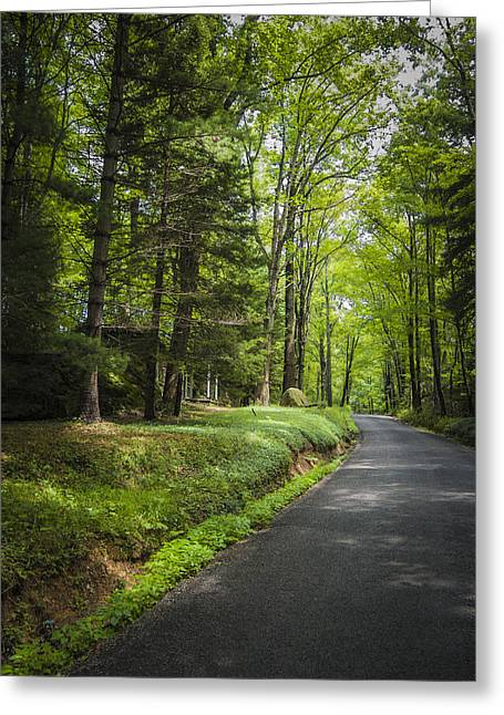 Roadway Greeting Cards - Country Road West Virginia Greeting Card by Jon Stephenson